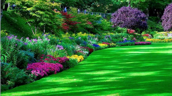 Not my garden. Heck, a girl can dream can't she?