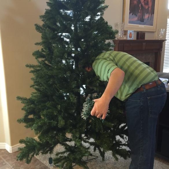 Hubby gets eaten by tree!